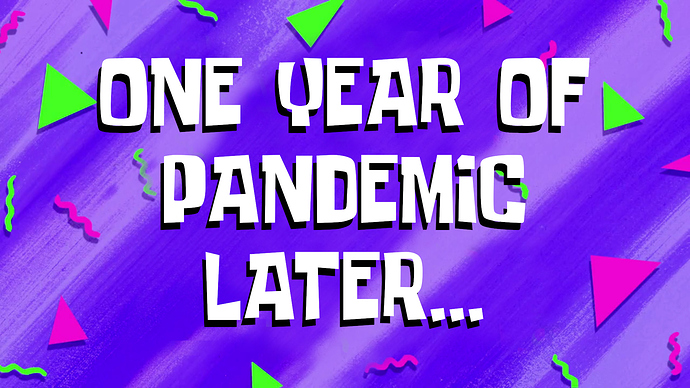 One Year of Pandemic Later